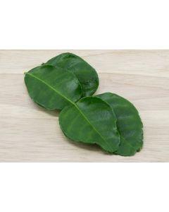Kaffir Lime Leaf Powder 50gram